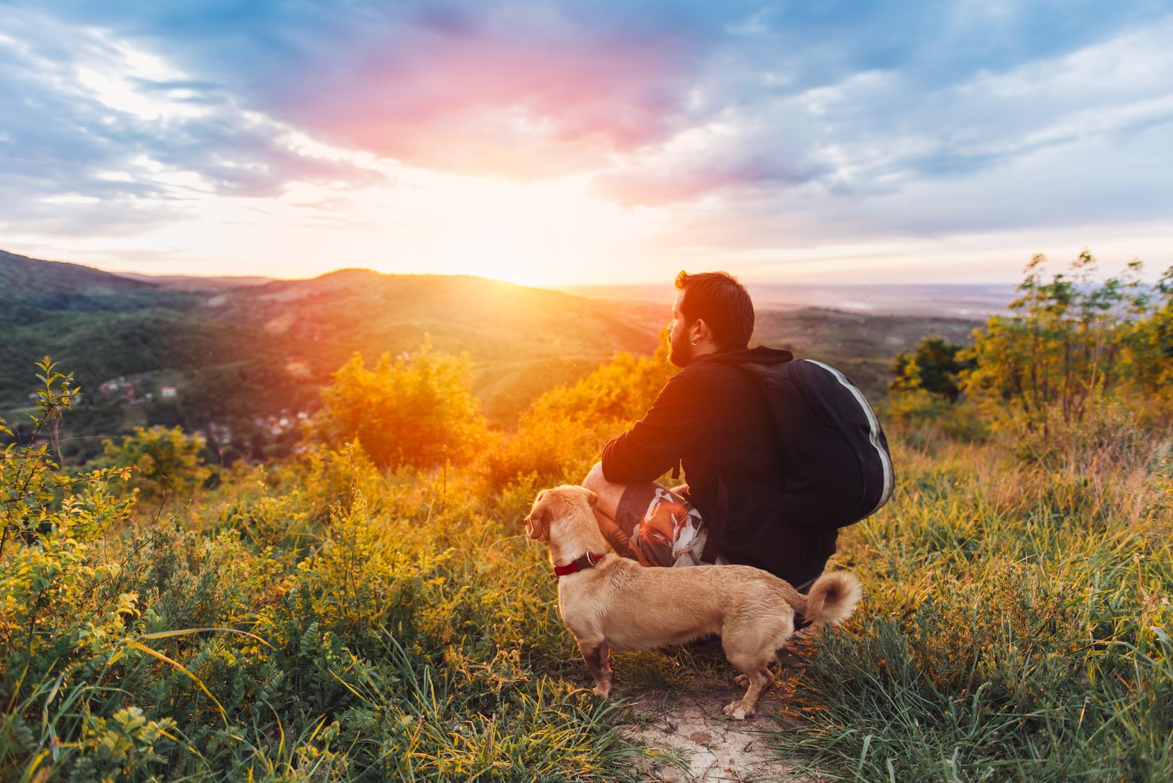 Special Wandern mit Hund im Frühling 2019