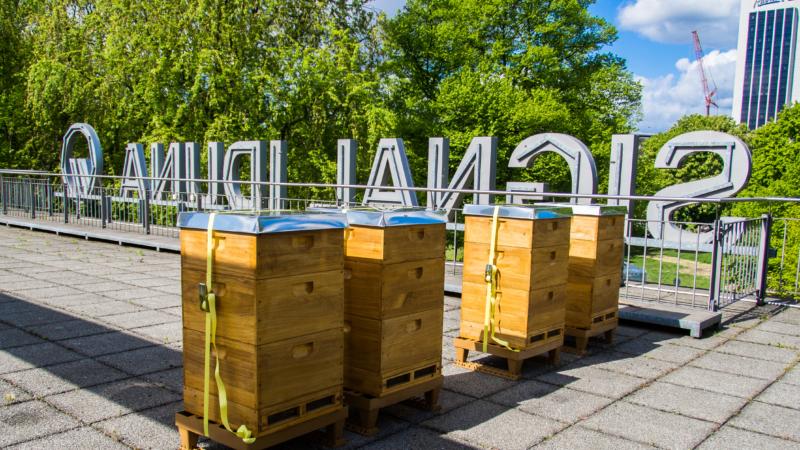 SIGNAL IDUNA setzt auf Bienen