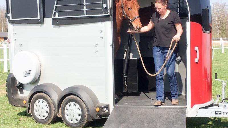 Pferdeanhängertest Ifor Williams HBX 511 auf Mit-Pferden-reisen.de