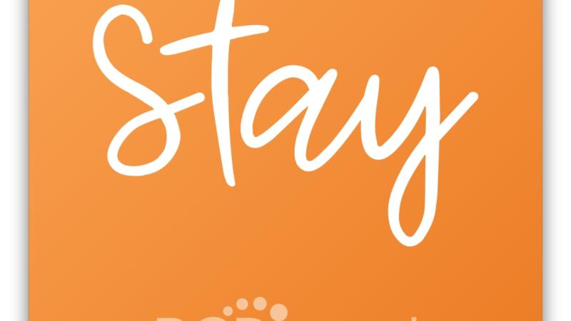 BCD Travel stellt innovativen Ansatz für Hotelprogramme vor – neue Hoteldivision liefert Unternehmen dynamischere, datengesteuerte Lösungen
