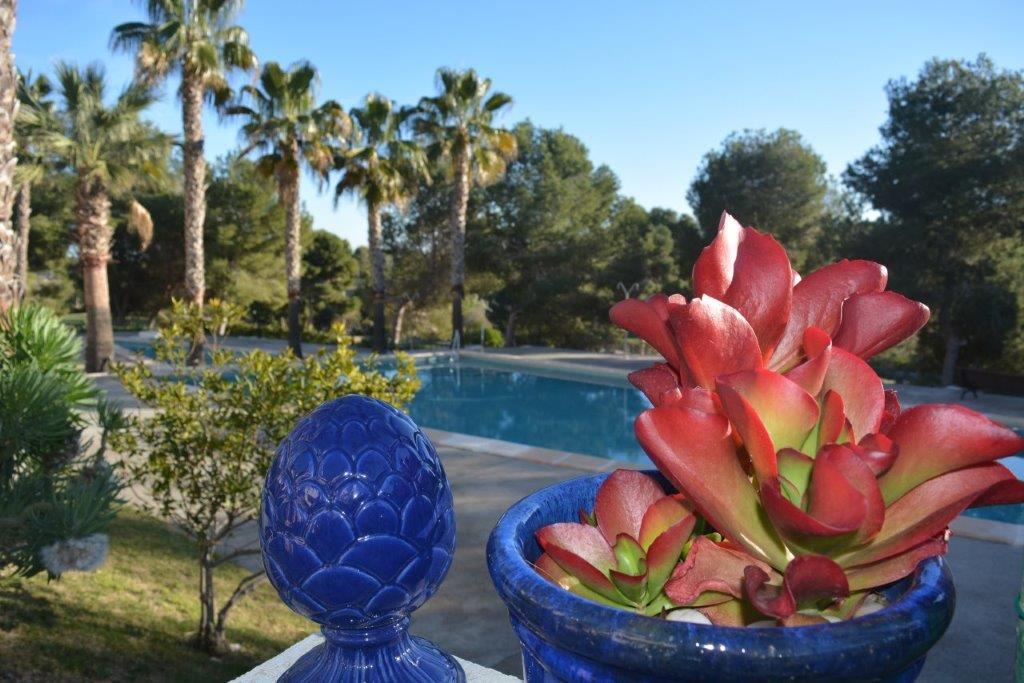 Eine zweite Heimat in Spanien kaufen und am Meer wohnen