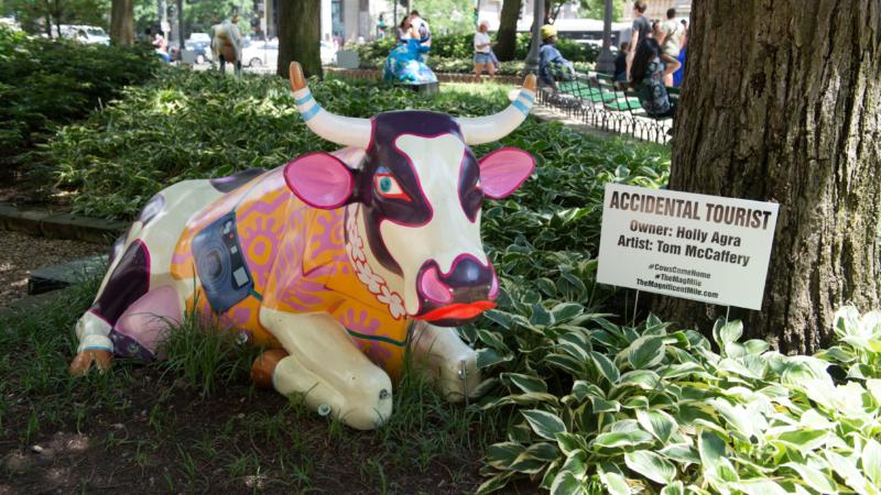 Die bemalten Kühe sind zurück in Chicago
