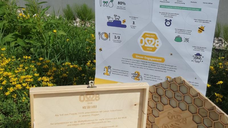 FAIE und Hektar Nektar – Gemeinsam für Bienen & Landwirtschaft