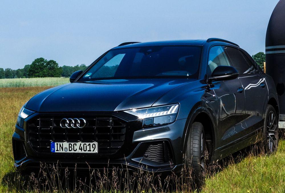 Pferdeanhänger-Zugfahrzeug Audi Q 8 auf Mit-Pferden-reisen.de