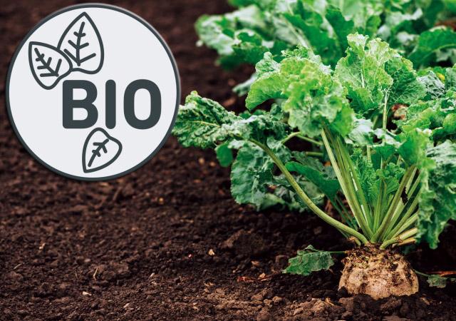 Infografiken der AGRAVIS Raiffeisen AG zur Bio-Landwirtschaft