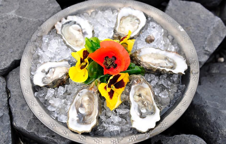 Start der Austernsaison auf Texel: erst sammeln, dann genießen