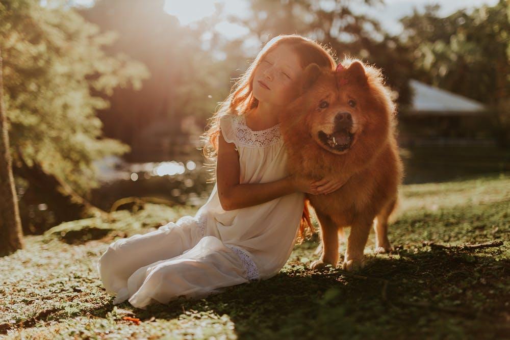 Herbsturlaub & Herbstferien mit Hund 2019: Am Meer, am See oder in den Bergen