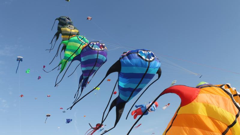 Das Drachenfestival lockt Familien und Drachenfans nach Fehmarn
