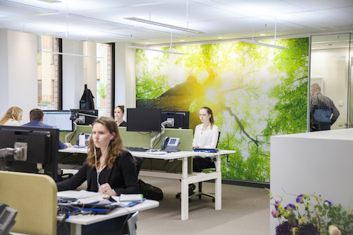 Mit Licht fit durch den Bürotag