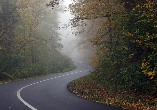 Herbstliche Verkehrssituationen meistern