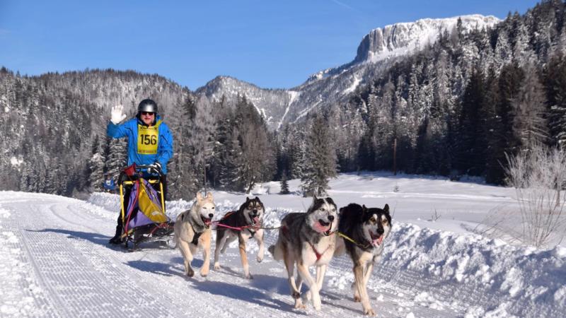 Größtes Schlittenhundecamp der Alpen im PillerseeTal