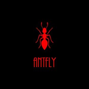Über Antfly Webdesigner, die Web und New Media Initiative