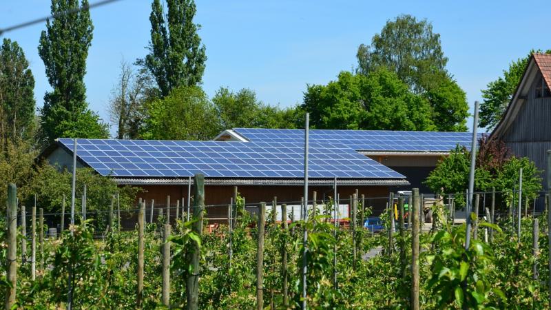 Photovoltaik für Unternehmen – Kosten sparen