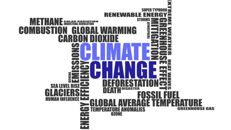 Klimaneutrales Unternehmen – Klimaschutz in wenigen Schritten
