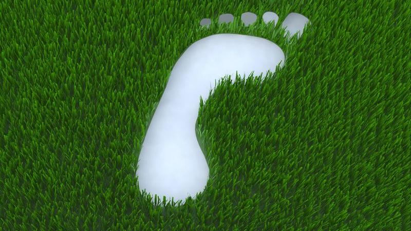 Emissionen vermeiden, reduzieren, kompensieren