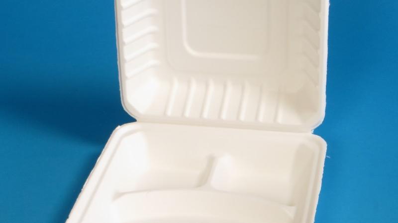 Bagasse Menüboxen als nachhaltige Alternative zum Styropor