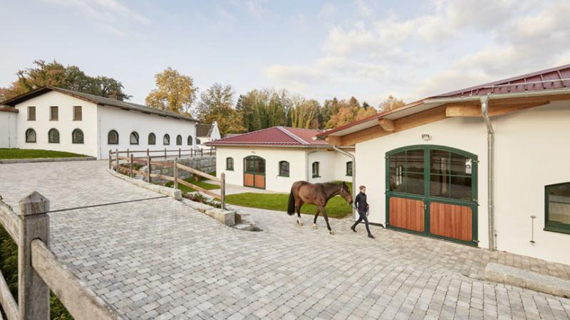 Rudolf Hörmann auf der Pferd Bodensee 2020: Reitanlagen, Showschnitzen und Hörmann-Cup