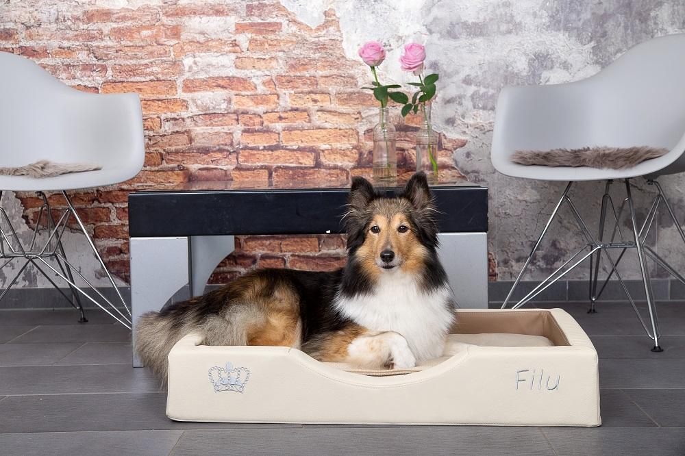 NEU I GEL – Hundebett gesund und exklusiv