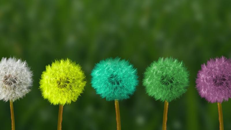 Achtsamkeit – Grundlage dynamischer Mitarbeiterführung