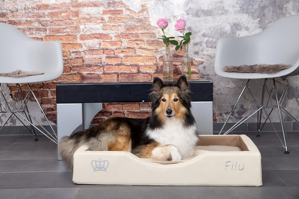 Orthopädische Hundeschlafplätze, deutsche Manufaktur