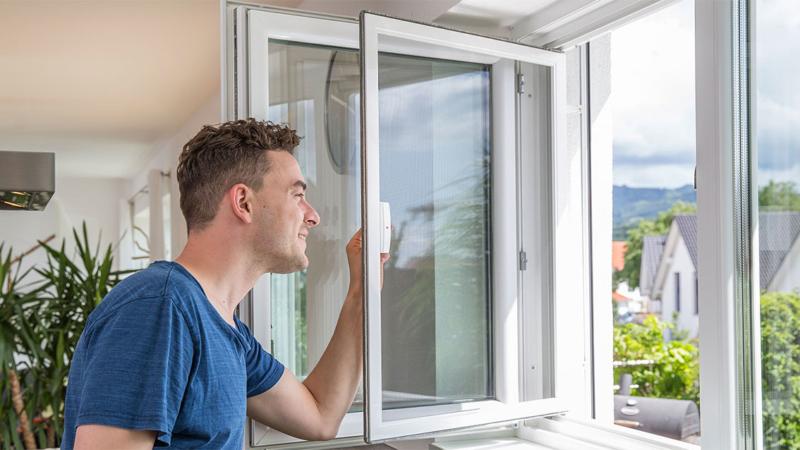 Insektenschutz Fenster – massgenauer Schutz vor Insekten