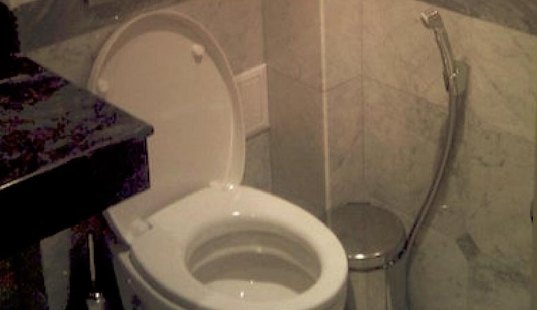 Die Toilette unter dem Rand reinigen – so bekommen Sie den Toilettenrand / Spülrand im WC ganz einfach wieder sauber.