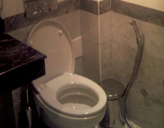 Die Toilette unter dem Rand reinigen – so bekommen Sie den Toilettenrand / Spülrand im WC ganz einfach wieder sauber