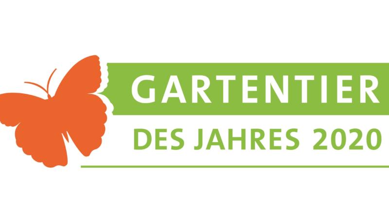 Stimmen Sie ab: Gartentier des Jahres 2020 gesucht