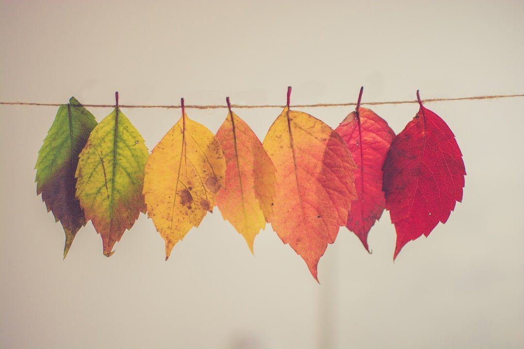Logodesign und Farbgestaltung: 7 Farben und deren Effekte