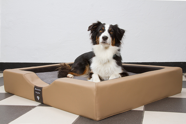 Anfertigung von Hundebetten in Sondergrößen