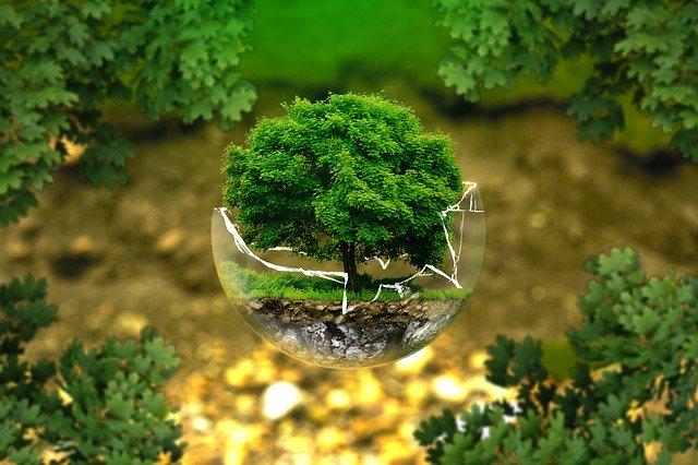 Umweltzertifiziert nach ISO 14001