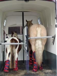 Wie viel wiegen Pferdeanhänger? Mit-Pferden-reisen.de aktualisiert Liste mit 300 Pferdeanhängergewichten