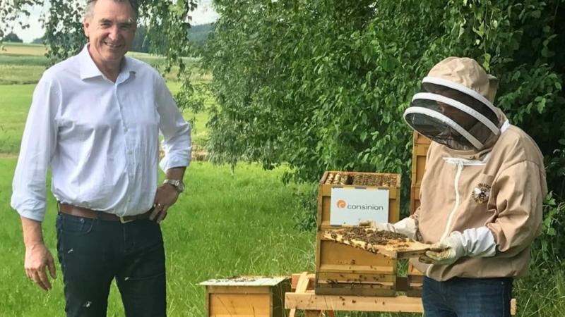 Ingenieur-Unternehmen consinion unterstützt 100.000 Bienen