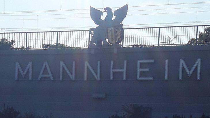 Der SEO Check für Unternehmen in Mannheim