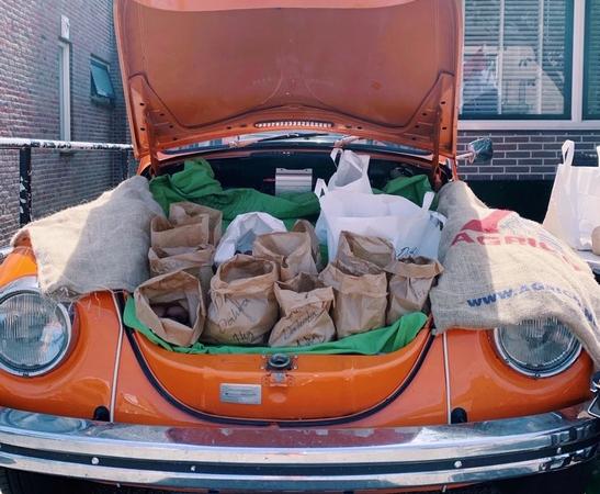 Dünenkartoffeln: Zandvoort führt jahrhundertealte Tradition fort