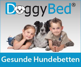 EMPFEHLUNG: Jetzt für ein DoggyBed entscheiden!
