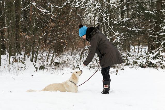 Gesünder leben mit Hund – Verbraucherinformation der ERGO Group