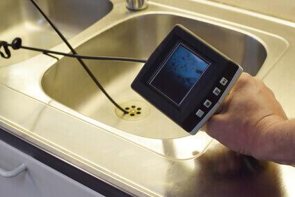 Silberfische im Bad/Küche