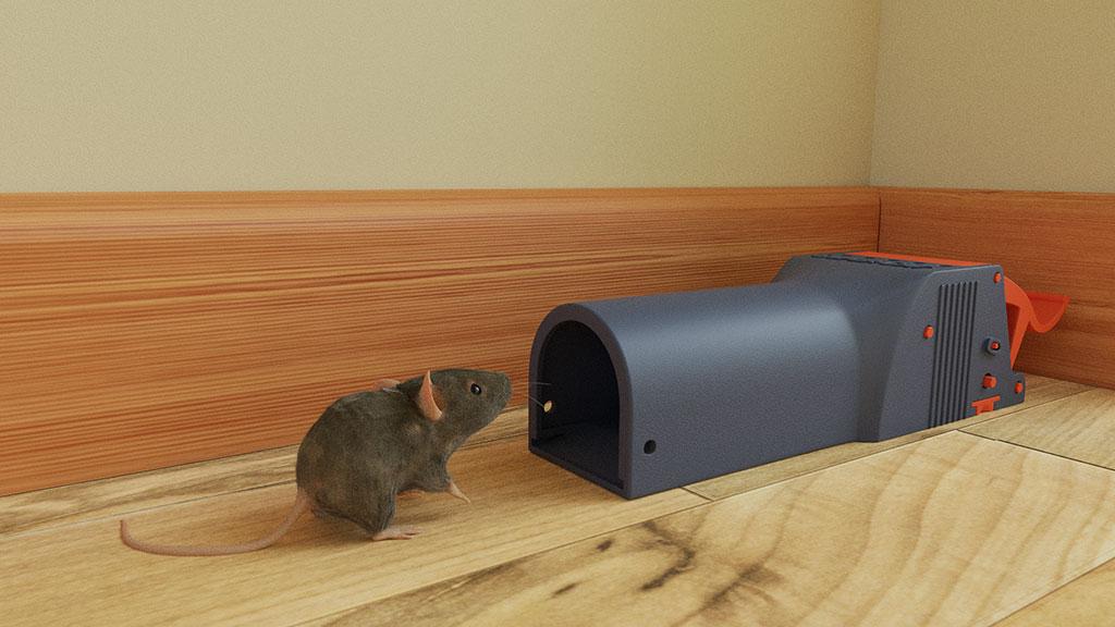 Mäuseplagen verhindern – Raus mit der Maus