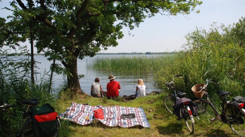 Picknick im Grünen: Auch Essensreste sind Müll