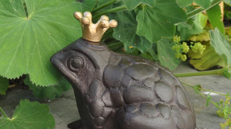 Urlaub im Gartenhaus  – Tipps zur Vermietung und Selbstnutzung