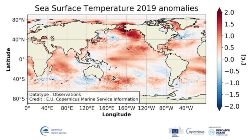 Welttag der Ozeane: Copernicus betont Langzeitfolgen des Klimawandels für unsere Meere