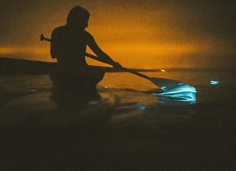 """Meeresleuchten: Am Strand von Zandvoort erlebt man sein """"blaues Wunder"""""""