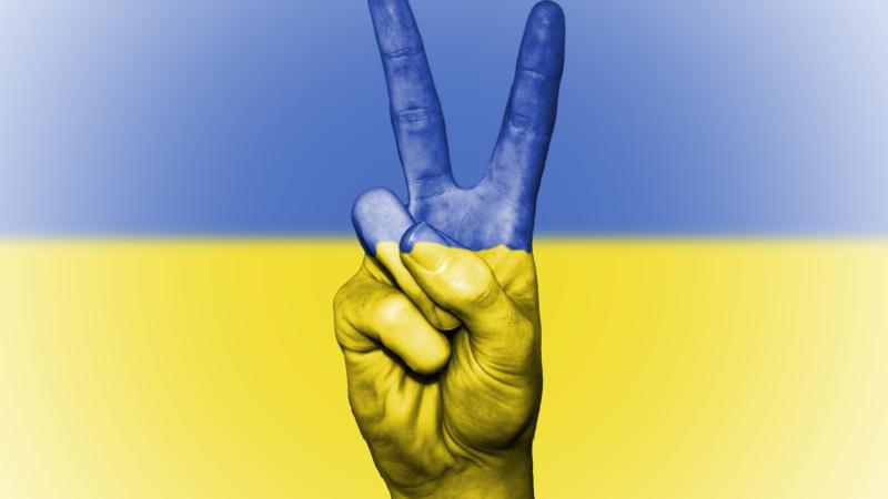 Ukraine: Nutzen Sie Ihre internationale Marke für die Registrierung von ua-Domains
