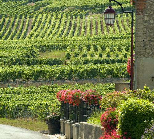 Champagne-Wochenende: Endlich wieder das französischste Lebensgefühl genießen
