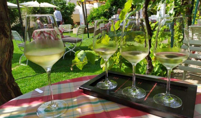 Teambuilding bei Weinwanderung in der Pfalz