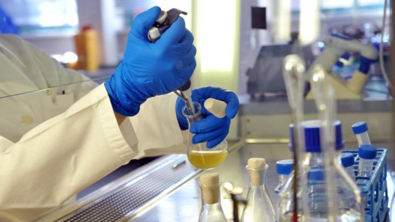 Neue Forschung auf dem Mikrobiom & Probiotics Forum in Rotterdam