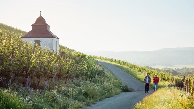 Weinwanderung an der Nahe: Sonne im Herzen, Genuss im Glas